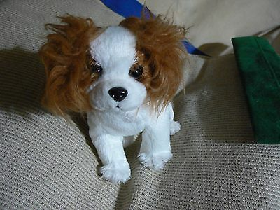 2001 TY BABIES HOLOGRAM TAG CUTE LITTLE WHITE AND BROWN DOG  bx 1
