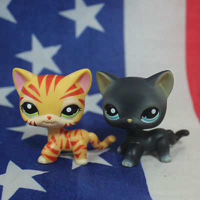 2pcs Littlest Pet Shop Black Shorthair Cat with Blue Eyes #555