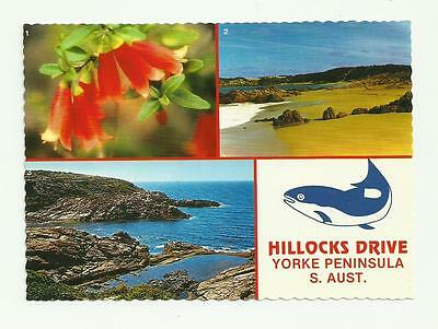 RELISTED 50% off Hillocks Drive,Butlers Beach Yorke Peninsula Post Card Sth Aust