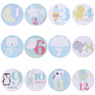 1-12 Months Baby Monthly Stickers Girl Boy Infant New Born toddler Party Shower