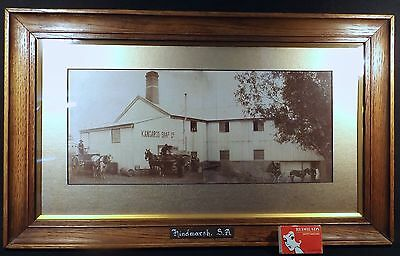 1905 Original Oak Framed Photograph Kangaroo Soap Company Hindmarsh Adelaide Sa