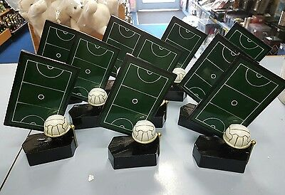 10 x 160mm New Netball Trophies Discontinued Range. Other Quantities available