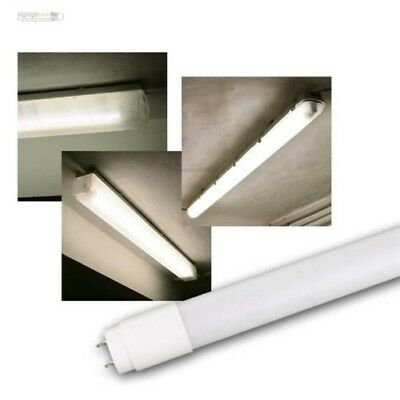 T8 LED Tube Illuminant Shada Neutral White 4000K, 0,6/1,2/1,5M