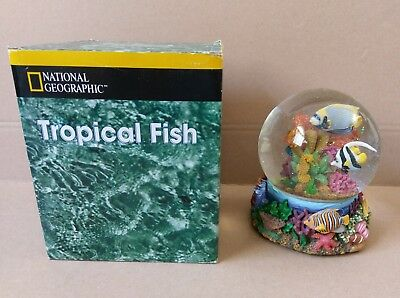NEW National Geographic San Francisco Music Box Co. Tropical Fish Water Globe