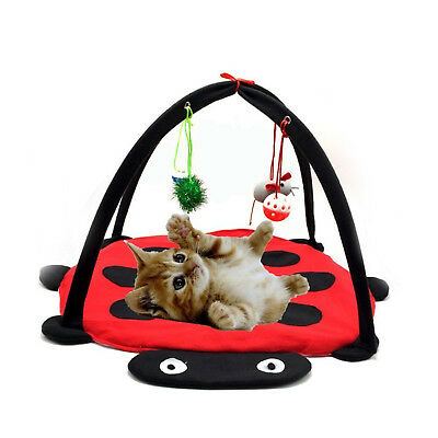 Cat activity play mat Kitten pet padded bed Hanging game toy balls & mice Kitty
