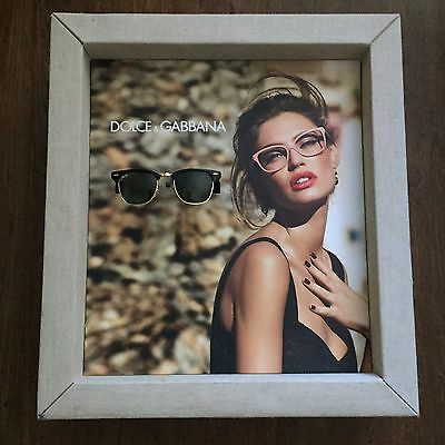 """Women's Dolce & Gabbana Sunglasses Promotional Store Display Case 13"""" By 16"""""""