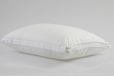 NEW Microfibre Covered Poly Filled Pillow Just B with Bambi Pillows