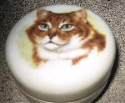 Collectable Small Cat or Kitten Trinket Box