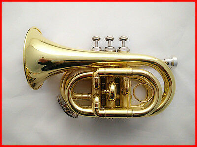 New Top Grade Professional B Flat Gold Color Brass Musical Instruments Trumpet #