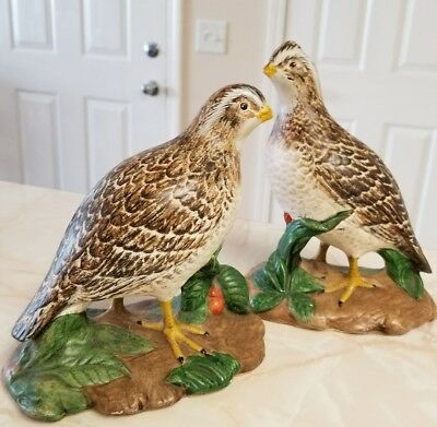 Pair Vintage Ceramic Quail Bobwhite Holland Mold Hand Painted Pretty