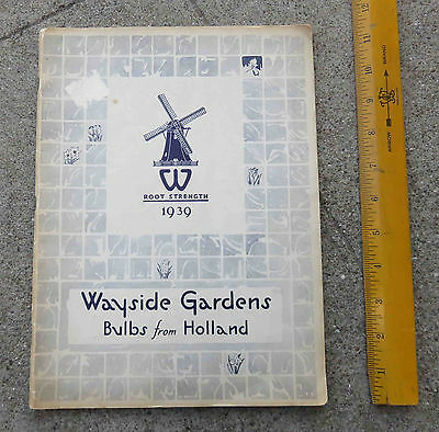 Vintage 1939 Wayside Gardens Bulbs from Holland Catalog Mentor OH