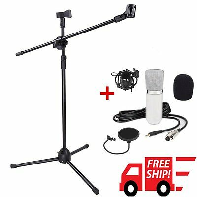 Professional Condenser Microphone Mic Studio Sound Recording w/Boom Stand Set FH