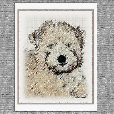 6 Soft Coated Wheaten Terrier Portrait Blank Art Note Greeting Cards