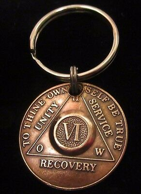 Alcoholics Anonymous 12 Year AA Bronze Medallion Key Chain Token coin keychain