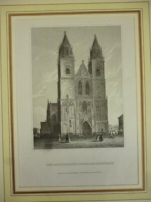 Orig. Stahlstich - The Cathedralchurch in Magdeburg.