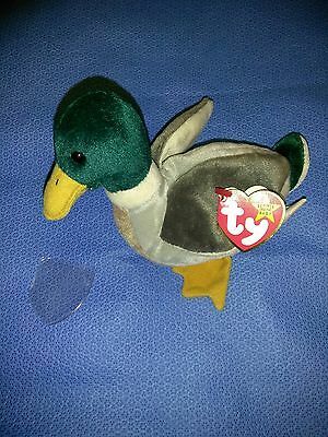 ff9da8cde19 RARE TY BEANIE Babies Jake tag ERRORS - no style   and date of birth ...