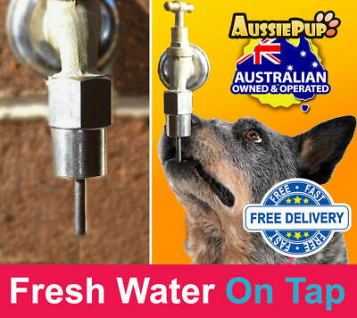 Dog Activated water Fountain - Automaticly turns on when dog Licks it -