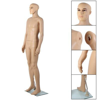 Full Body Male Mannequin Realistic Display Head Turns Dress Form w/ Base New FA