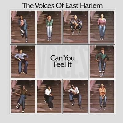 VOICES OF EAST HARLEM Can You Feel It NEW SEALED LP Vinyl 70s Soul (Soul Brother