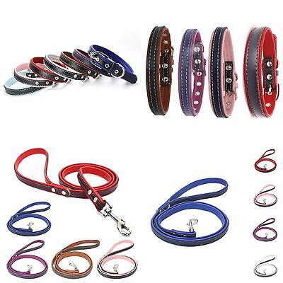 Safety Dog Faux Leather Collar/Leash Adjustable Puppy Pet Cat Necklace Ardent