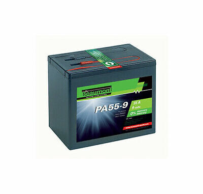 Alkaline Battery 55 A - 9 V