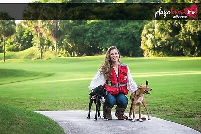 Dog walkers and Trainers love the EZ Dog Walker's Vest - Carry items hands-free!