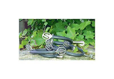 Pessoa'Prince Of Wales' Stainless Steel Spurs