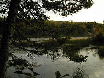 Cape Breton - Allans Point Lot 12 - Nova Scotia, Canada - Cottage Lot