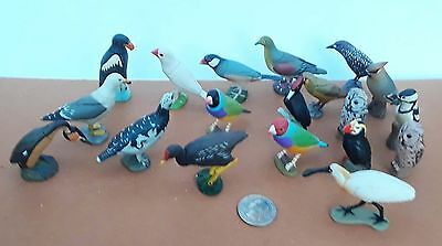 19 Birds Kaiyodo ChocoQ Animatales pets gull gouldian Java finch puffin waxwing