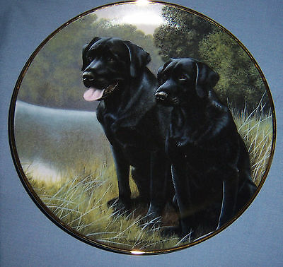 """""""Sporting Companions""""  Black Lab Collector Plate"""