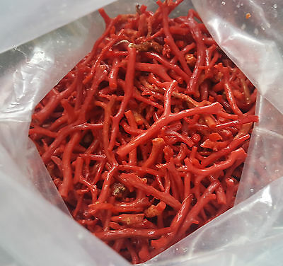 100ct Natural Rough Red Coral Branches Tree Raw Coral Mediterranean Sea Coral