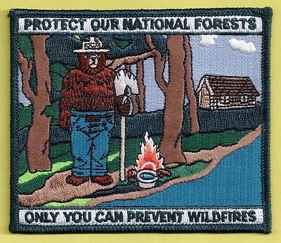 USFS US Forest Service Smokey Bear NEW National Forest System Poster Patch