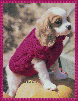 KNITTING PATTERN - dog sweater to fit a King Charles Cavalier ...