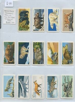 Rare Full Set 48 Canadian Brooke Bond Tea Cards Animals Of North America Q18.