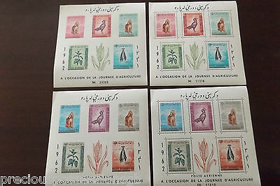 Afghanistan 4 Souvenir Miniature Sheets 1962 Agriculture Perf&imperf Mnh Mint