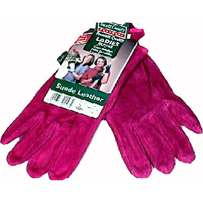 Town & Country Premium Leather Gloves M