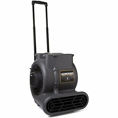 WORKSHOP WetDry Vacuums WS1625AM Air Mover Fan Carpet Dryer, High Velocity Floor