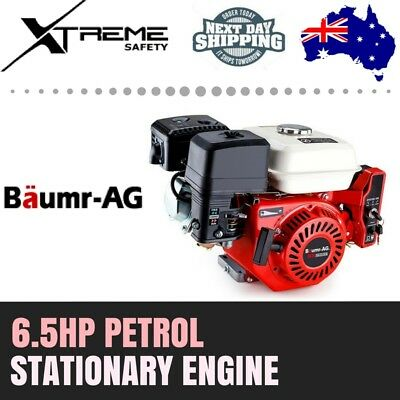 Baumr-AG 6.5HP Petrol Stationary Electric Engine Direct Ignition 4 Stroke Motor