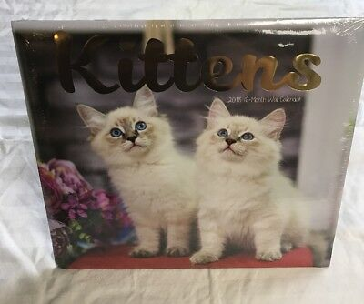 2018 Kittens Wall Calendar 16 Month Baby Cats Kitty Animal Lovers