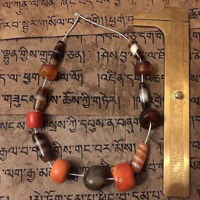 2000+- Old Antique Ancient Tibetan Amber Pema Raka Chung RaMig Dzi Bead NECKLACE