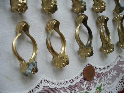 "5PC LOT SMALL 2"" Antique VTG CLAM SHELL BRASS TONE METAL CAFE LACE CURTAIN CLIPS"