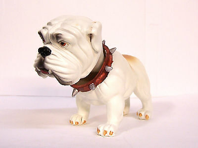 "White English Bulldog Bobble Head Knocker Hound 6"" Polystone Resin"