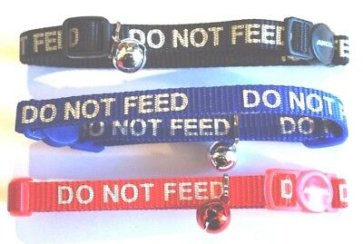 Do Not Feed Ancol Safety Cat Collars Reflective + Bell And Release Snap Buckle