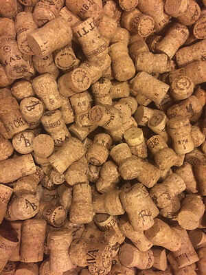 Champagne Corks - 100+ Fall Halloween Crafting