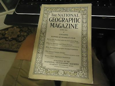 1921 National Geographic June flowers Of Grasses in Color