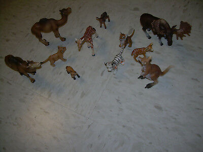 Lot of 10  Schleich wild  Animals Moose Camel Lion Kangeroo Fawn  Schw Gumnd