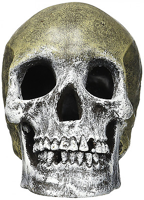 Skull Ornament for Fish Tank Aquarium -Rosewood Blue Ribbon Human Skull New