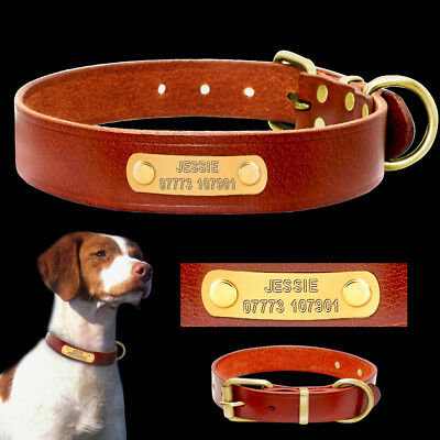 Genuine Leather Personalized Dog Collars Pet Dog Puppy ID Name Engrave for Free