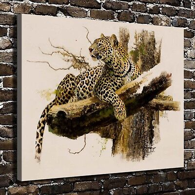 animals Paintings HD Canvas Print Home Decor Room Wall Art Pictures