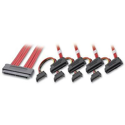 Lindy SAS / SATA Multilane to 4 x SAS + SATA Power Cable, 0.5m (33525)